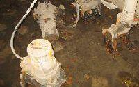 Schaden Pumpwerk Regenbecken