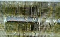 Risse Schaden Kühlturm
